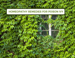 Homeopathy Remedies For Poison Ivy